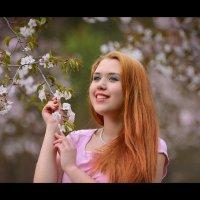 Сакура :: Ludmila Zinovina