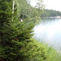 Берег озера :: Надежда Малинкина