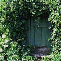 Зеленая дверь :: Татьяна Белогубцева