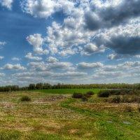 Весеннее поле :: Милешкин Владимир Алексеевич