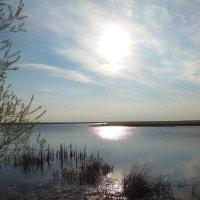 вечер у озера Жалтырколь :: игорь