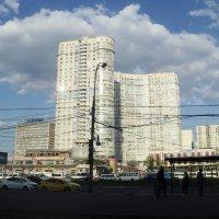Гуливер :: Ольга Кривых