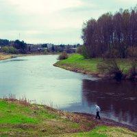 Прогулки у реки :: Андрей Куприянов