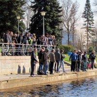 Рыбалка - дело и зрелище азартное...) :: Ирина Румянцева