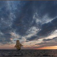 Свежий ветер :: Николай Капранов