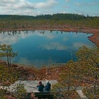 Национальный парк Леивонмяки :: Валентина Потулова