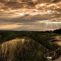 Вечер в дюнах Балтики. :: Виталий Латышонок