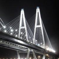Большой Обуховский мост :: Юрий Захаров