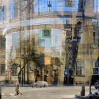 весенний трамвайный путь :: sv.kaschuk