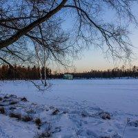 Последний день зимы :: Алёнка Шапран