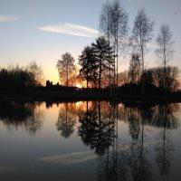 На закате уходящего дня :: Mariya laimite
