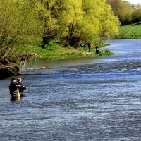 Рыбалка на реке Зуша. :: Борис Митрохин