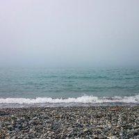 Туман с моря :: Елена Волгина