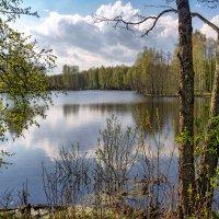 Майская натура :: Владимир Макаров