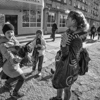 голубиные страсти :: Маргарита Лапина