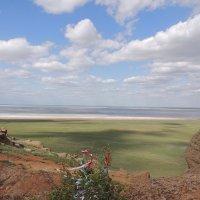 вид с горы Б.Богдо на о. Баскунчак :: Евгения Чередниченко