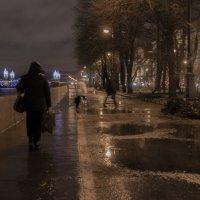 декабрь вместо снега дождь :: Владимир Фомин