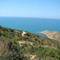 Тунис. Средиземное море :: Михаил Радин