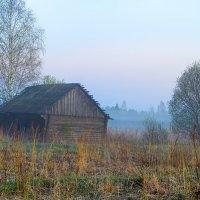 Туман :: Бронислав Богачевский