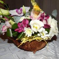 Цветочная композиция в скорлупе кокосового ореха :: Лёля Совина