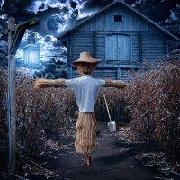 Лунная ночь :: Виталий Волков