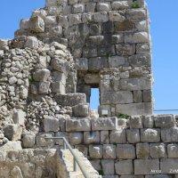 Крепость Нимрод :: Валерьян