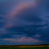 весеннее небо перед дождём :: Павел Данилевский