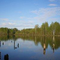 колдовское озеро... :: александр дмитриев