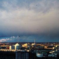 Движение :: Пётр Баранов