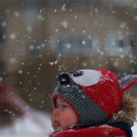 любопытная зима :: Валерия Лобова