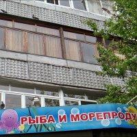 Голубиные посиделки :: Нина Корешкова