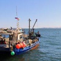 в море :: Рада Казелло