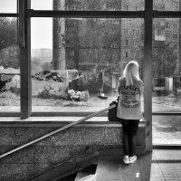Диалог с дождём :: Павел Самарович