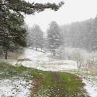 Майский Снег... :: MoskalenkoYP .