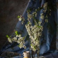 Цветущая весна. :: Svetlana Sneg