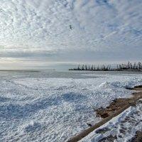 Азовское зимой :: Рина Воржева