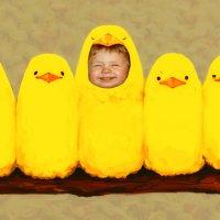 цыплята :: Наталья Литвинчук