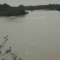 река бурлит после наводнения в августе 13 года :: игорь