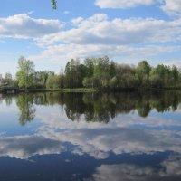облака в реке :: Ольга Варванец