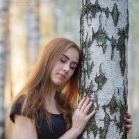 берёзка :: Ярослава Бакуняева