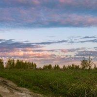 Сельский ландшафт :: cfysx