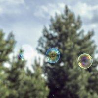 Лопнувший пузырь :: Вадим Куликов