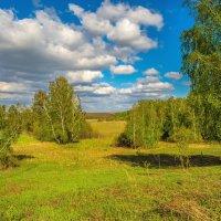 Пейзаж по-русски :: Андрей Поляков