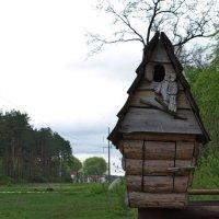 Домик совы :: shabof