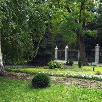 Сад :: Вера Щукина