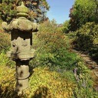 Гуляя в японском саду 5 :: Alexander Andronik