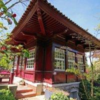 Гуляя в японском саду :: Alexander