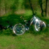 Велосипед :: Владимир Безгрешнов