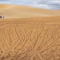 Белые дюны, Муйне, Вьетнам :: Борис Гольдберг