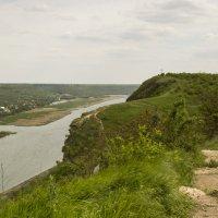 Обрывистый берег Днестра :: Юля Колосова